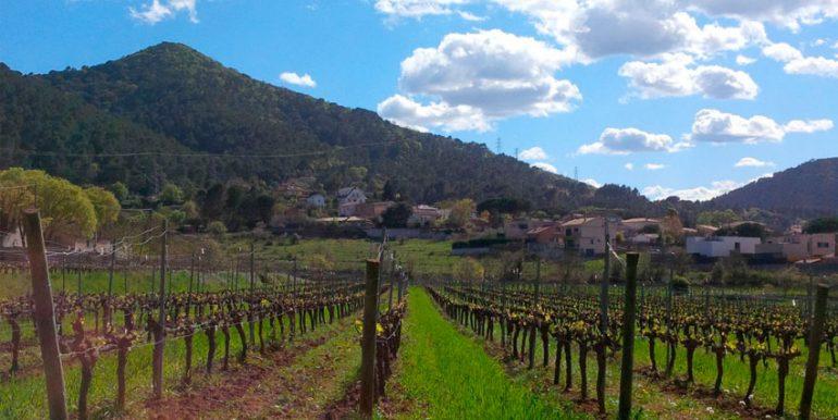 casa-en-venta-vilanova-del-valles21